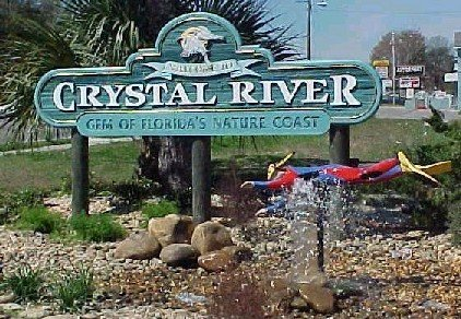 Serving Crystal River We buy gold - spring hill - vermillion enterprises - cash for gold - serving brooksville, crystal river, dade city, floral city, holiday, homosassa, hudson, inverness, land o lakes, lecanto, lutz, new port richey, odessa, spring hill, wesley chapel, zephyrhills - we buy gold, cash for gold, scrap gold, gold and silver bullion, coins, jewelry, sterling silver flatware, dental gold, gold jewelry, silver jewelry, 90% silver, 40% silver, .999+ fine silver, american gold eagles, american silver eagles, gold, silver, platinum, palladium, rhodium VERMILLION ENTERPRISES IS YOUR GO TO GOLD AND SILVER BULLION DEALER, COIN SHOP AND JEWELRY BUYER LOCATED IN SPRING HILL FLORIDA SERVING - BROOKSVILLE, CRYSTAL RIVER, DADE CITY, FLORAL CITY, INVERNESS, LAND O LAKES, LECANTO, LUTZ, NEW PORT RICHEY, ODESSA, PORT RICHEY, HOLIDAY, HOMOSASSA, HUDSON, SPRING HILL, WESLEY CHAPEL, ZEPHYRHILLS, TAMPA, KISSIMMEE, ORLANDO, CLEARWATER – SCRAP GOLD JEWELRY INCLUDING – NECKLACES, BRACELETS, DENTAL, EARRINGS, CLASS RINGS, BRIDAL SETS, WEDDING BANDS, ETC. WE BUY IT ALL – 8K, 9K, 10K, 14K, 18K, 22K, 24K. WITH OR WITHOUT DIAMONDS OR GEMSTONES. CASH FOR GOLD NEAR YOU? WE ARE IT! LOCATED AT: 5324 SPRING HILL DRIVE, SPRING HILL, FL 34606 – PH: 352-585-9772